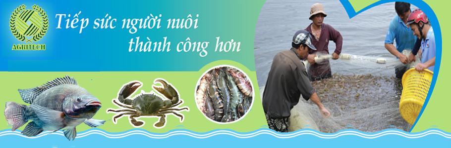 Cung cấp và Tư Vấn miễn phí cho người nông dân các thông tin, kiến thức bổ ích liên quan đến Thủy Hải Sản.