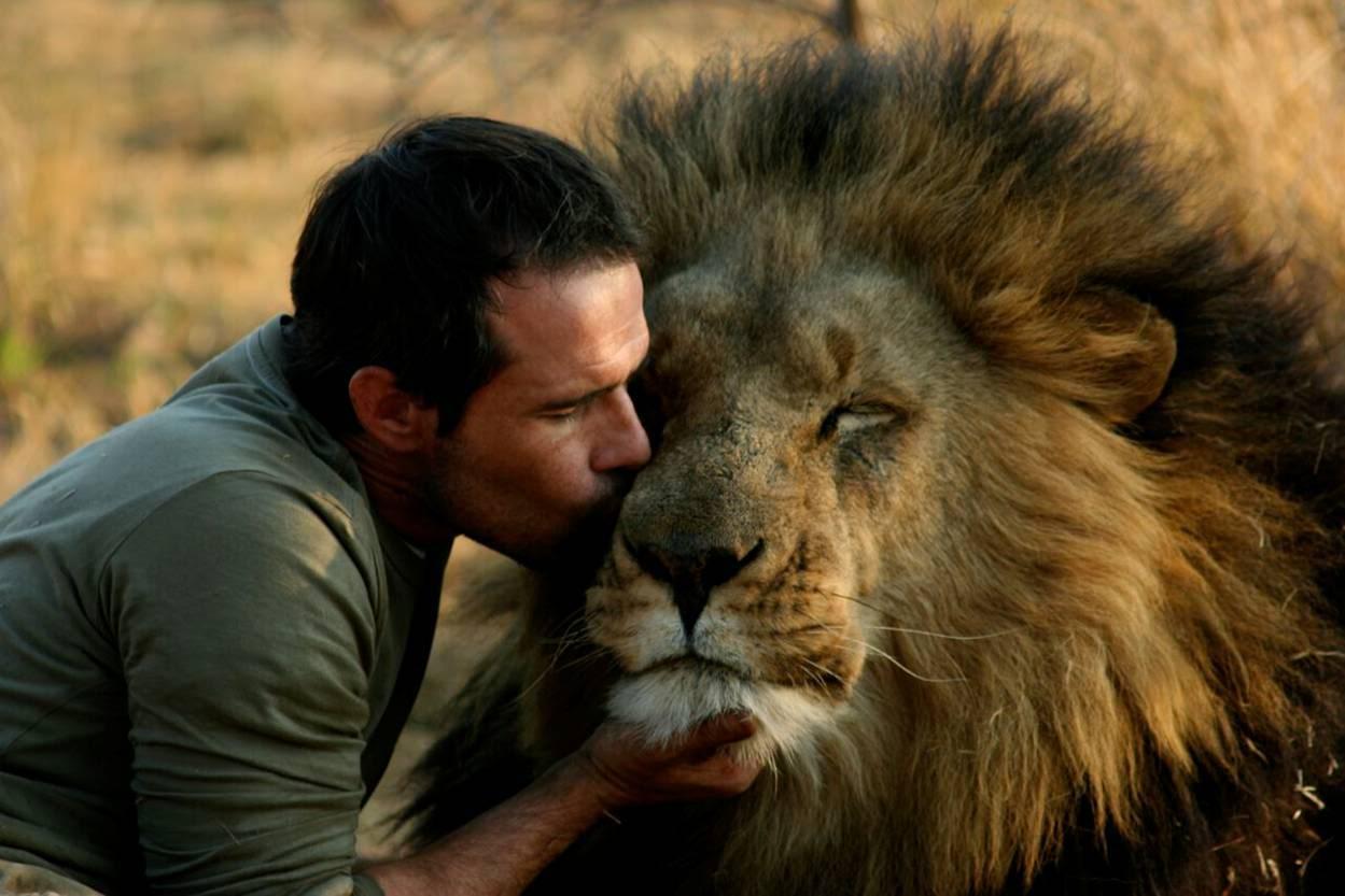 Wie flirtet ein löwe mann
