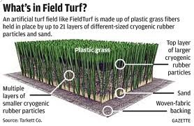We Live In A Political World 92 Artificial Turf