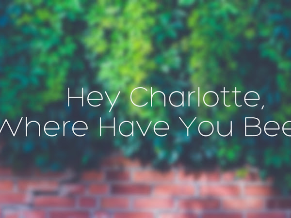 HEY CHARLOTTE, WHERE HAVE YOU BEEN?!