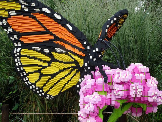 From My Carolina Home - North Carolina Arboretum