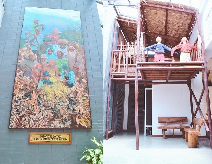 IRRI Riceworld Museum Tour