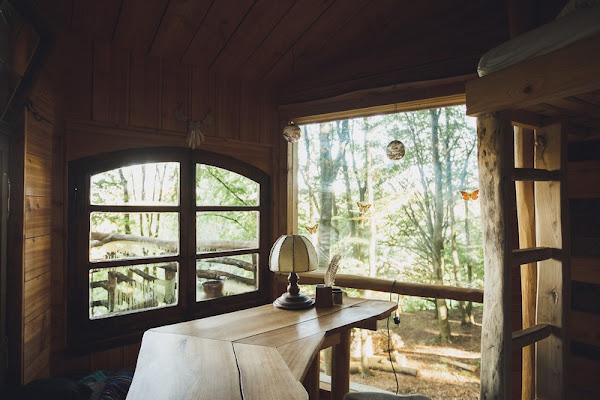 Robin's Nest Treehouse Hotels