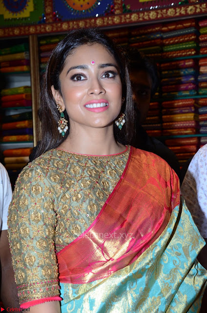 Shriya Saran Looks Stunning in Silk Saree at VRK Silk Showroom Launch Secundrabad ~  Exclusive 003.JPG