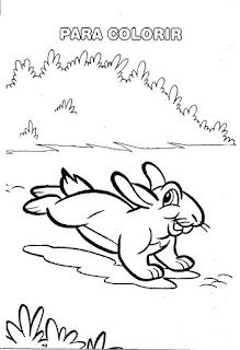 Desenho coelho colorir