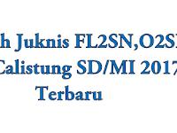 Download Contoh Juknis FL2SN,O2SN dan Calistung SD/MI Tahun 2017