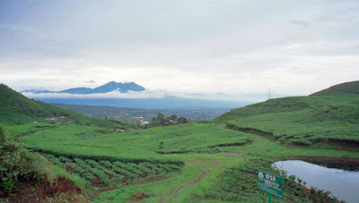 Puncak, Kabupaten Bogor