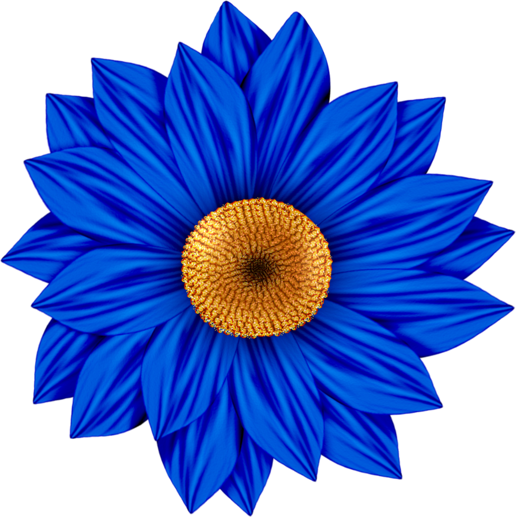 Color Daisies: ForgetMeNot: Colored Daisies