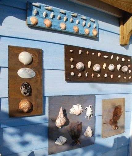 Shell Wood Art