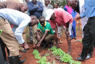 Kenyan smallholders adopt market-oriented production via iAgribiz
