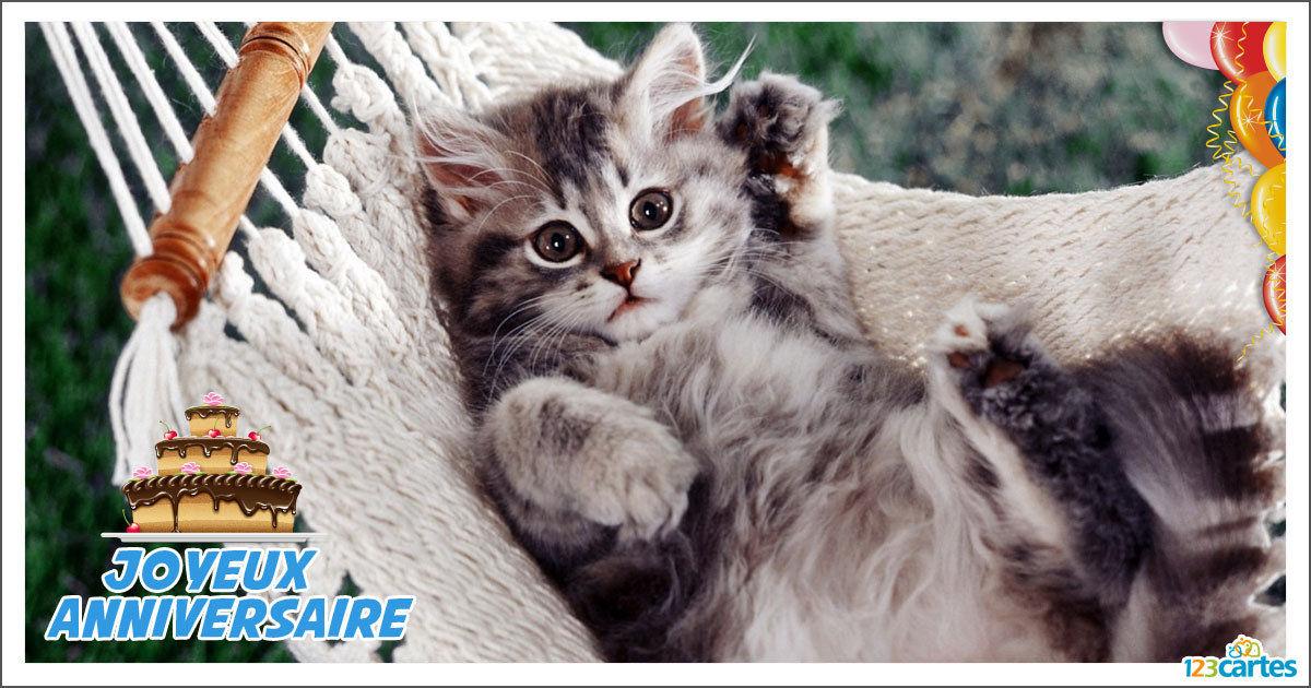 Carte anniversaire facebook chat gratuite carte anniversaire facebook - Image animaux gratuite ...