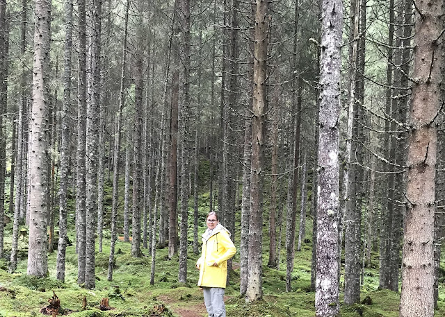Regenjackenwetter Herbst Wald Tipps Wandern mit Kindern Ausflugsziele Ausruestung Oesterreich Jules kleines Freudenhaus