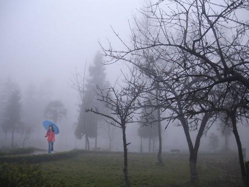 mùa mưa đà lạt
