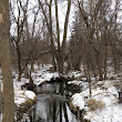 Penelopedia: Nature and Garden in Southern Minnesota: Dark Water in Winter