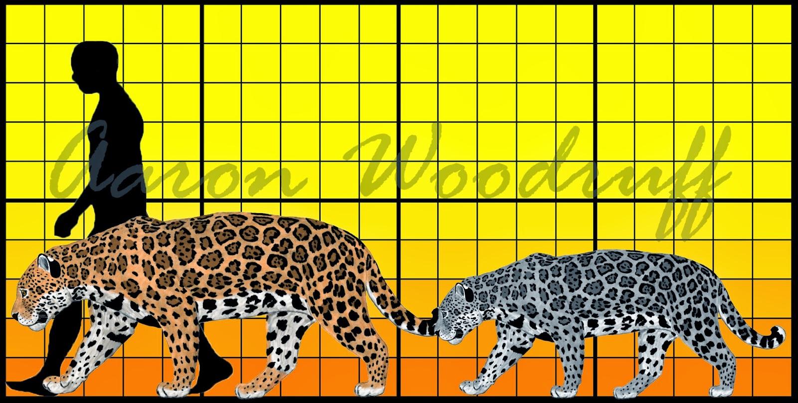 Life In The Cenozoic Era Jaguar Panthera Onca