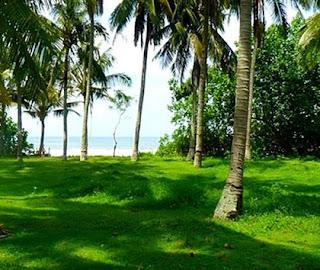 http://www.teluklove.com/2017/01/pesona-keindahan-wisata-pantai.html