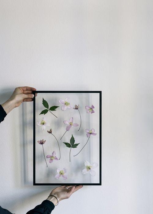 dekoratif kurutulmuş çiçek