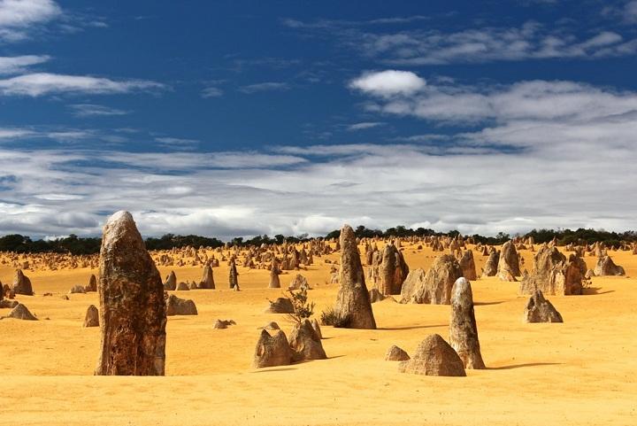 Misteri Ribuan Pilar Karang yang Tumbuh dari Dalam Pasir