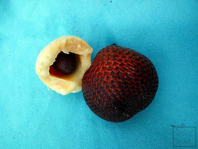 Salak jadalny (Salacca edulis) - owoc pokryty łuską węża - jak smakuje, wygląda, jadalne owoce palm, oszplina jadalna.