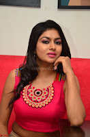 Akshita super cute Pink Choli at south indian thalis and filmy breakfast in Filmy Junction inaguration by Gopichand ~  Exclusive 104.JPG