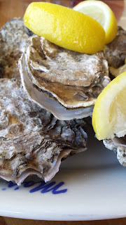 Fresh Oysters, Living From Glory To Glory Blog...