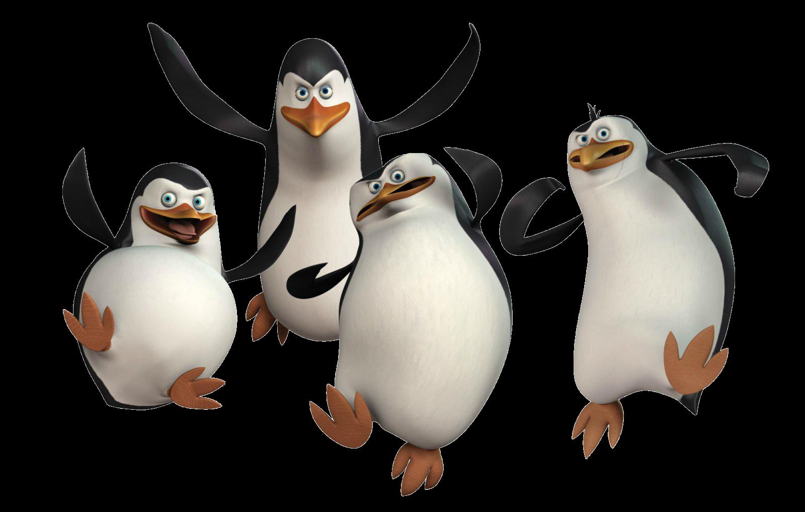 Madagaskar Pinguine