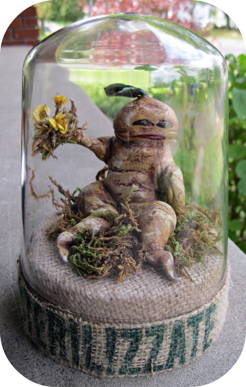 Make It With Me How To Make Pick A Mandrake Root And