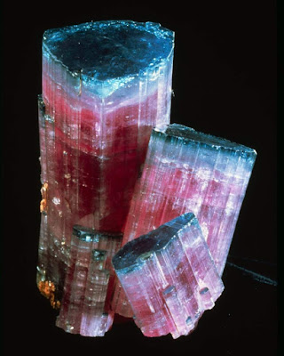 "Elbaite tourmaline, cluster of four intergrown ""blue-cap"" crystals, Tourmaline Queen Mine, California."