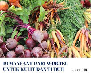 manfaat wortel untuk tubuh dan efek sampingnya