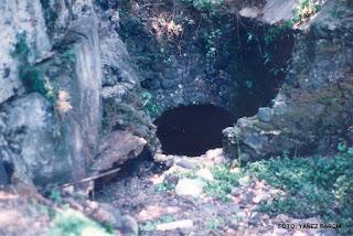 entrada de la cueva de la orquídea