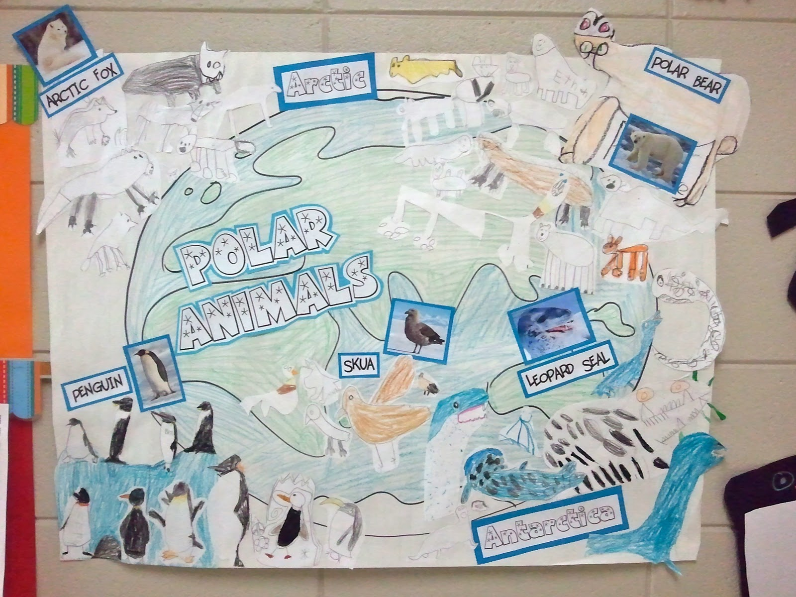 Soaring High In Second Grade Penguins Polar Bears And