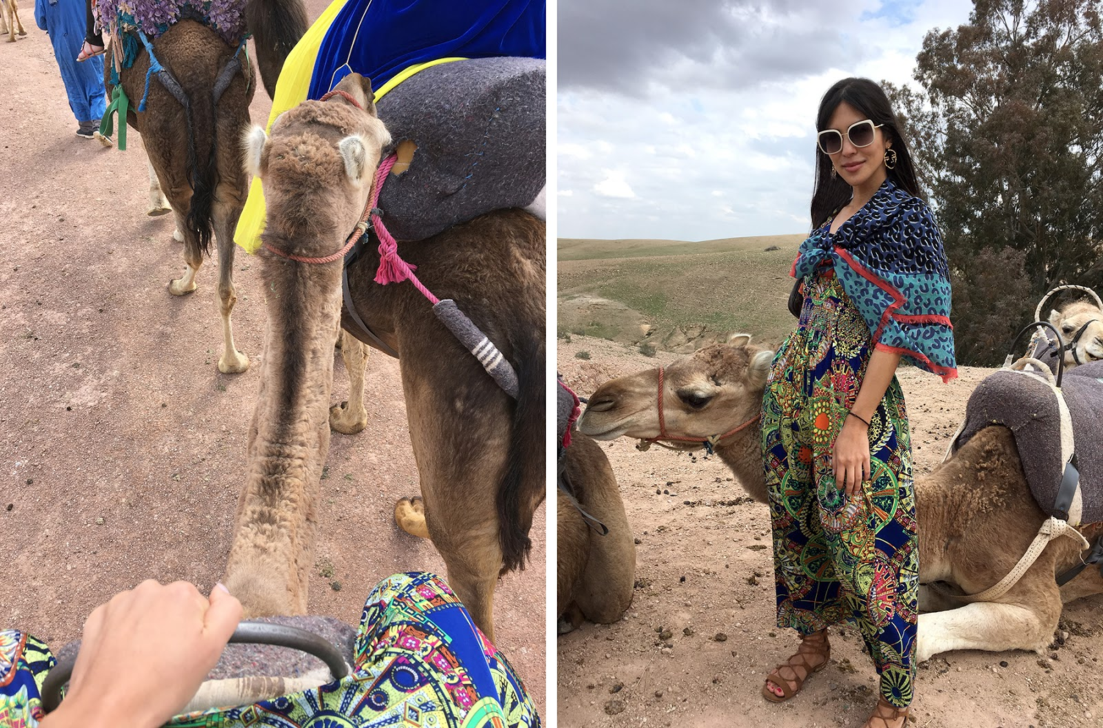 Euriental | luxury travel & style | Photo diary of Marrakech, Morocco, camel riding in desert