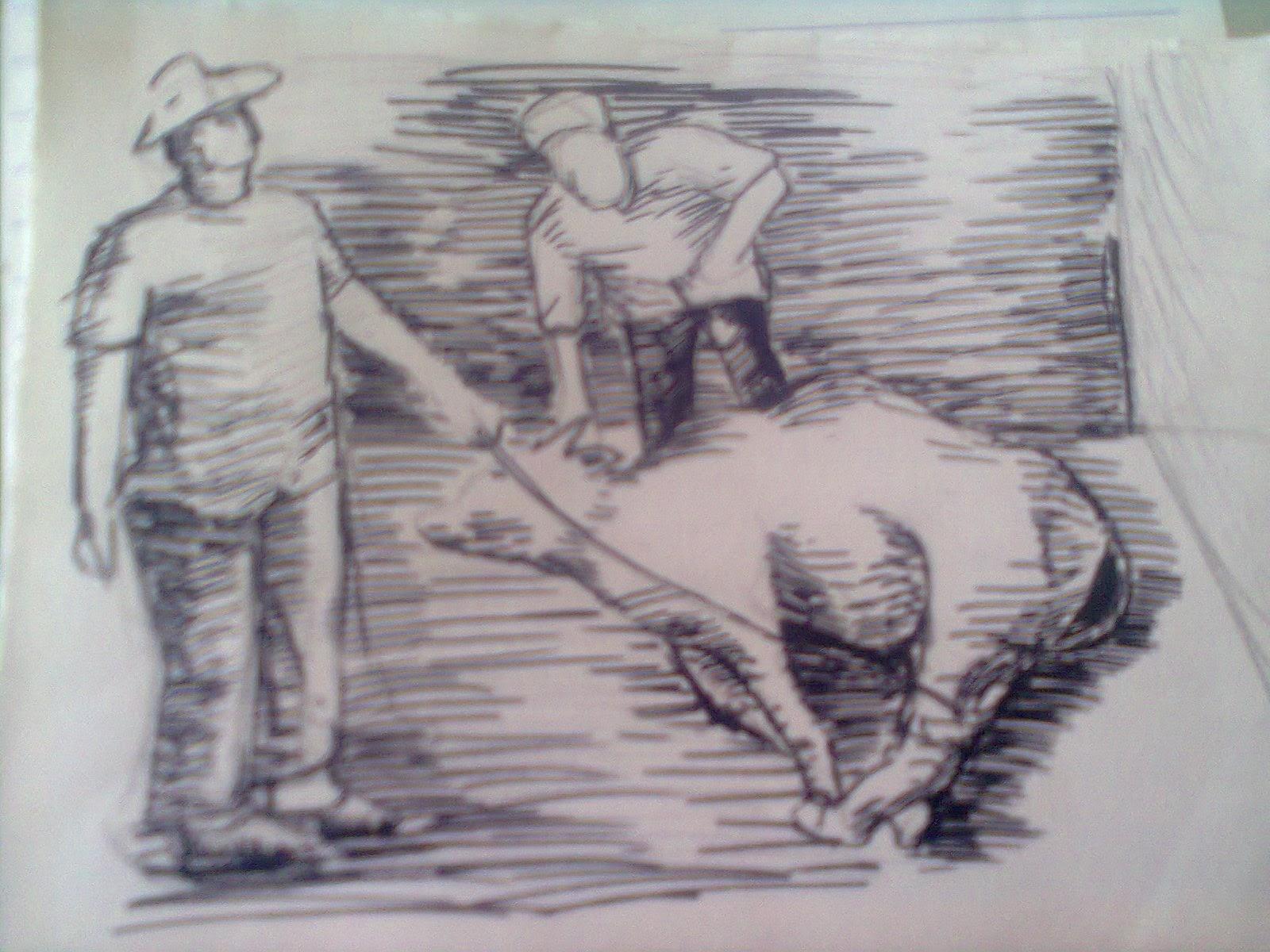 Kumpulan Gambar Sketsa Spidol