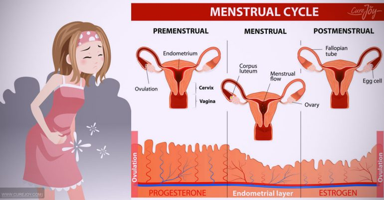 the truth behind pre menstrual dysphoric disorder And the truth is, it is a gift or at least it does me no good to think otherwise my body is a feminist body.