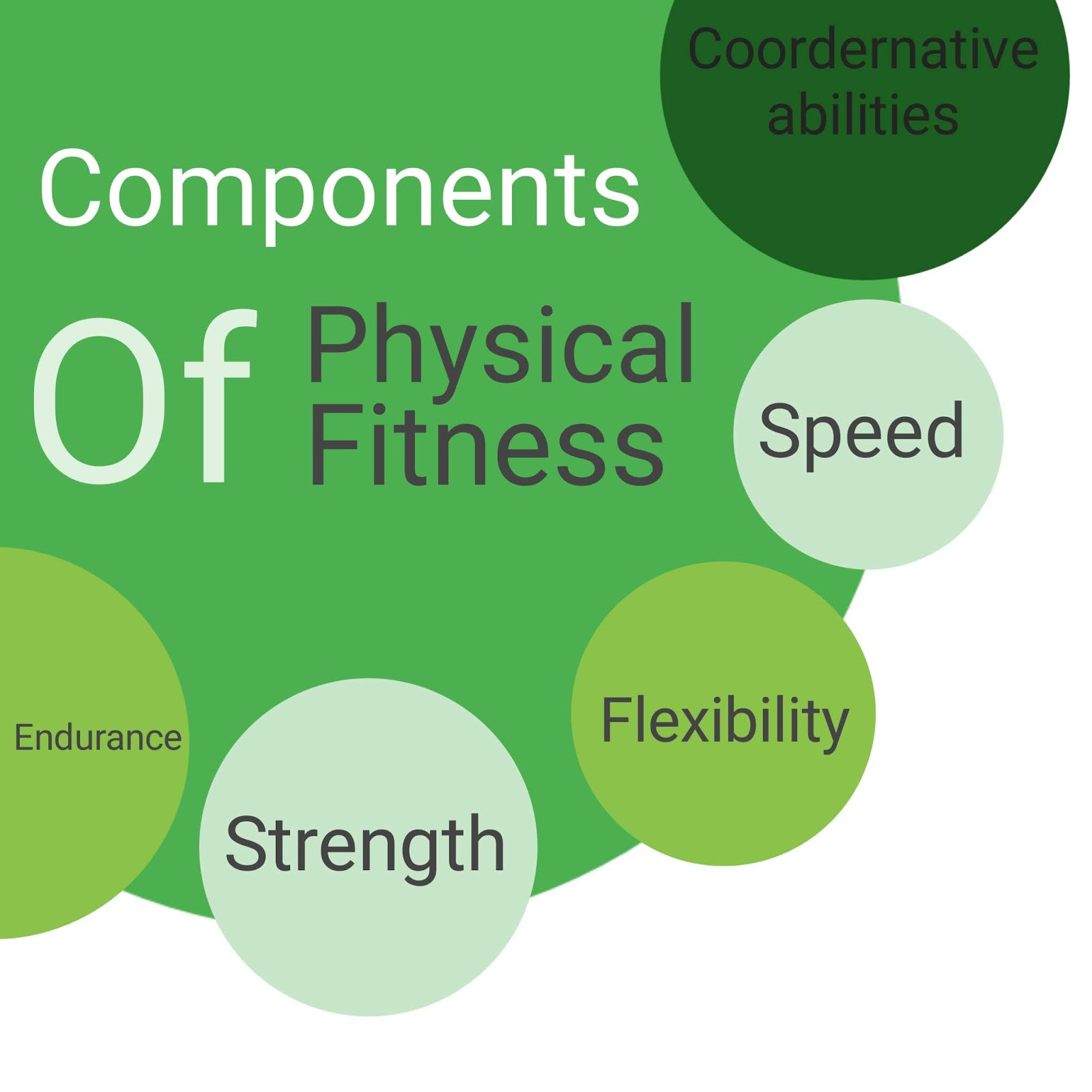 What Are The Fitness Components