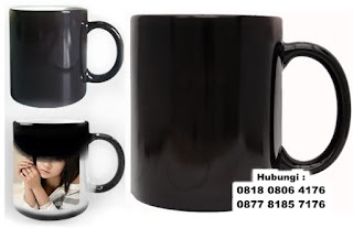 Jual Mug Bunglon Foto Sablon digital / Mug Magic