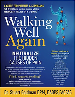 Walking Well Again: Neutralize the Hidden Causes of Pain by Stuart Goldman