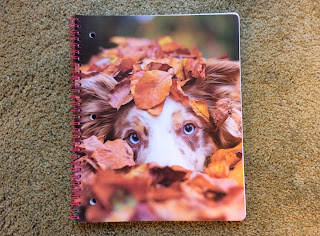 Spiral notebook with photo of blue-eyed dog partially hidden under leaves