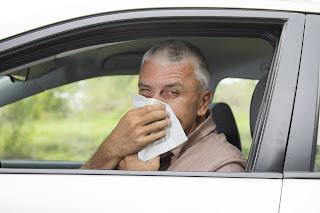 Consejos para conducir si tienes alergia primaveral - FÉNIX DIRECTO Seguros