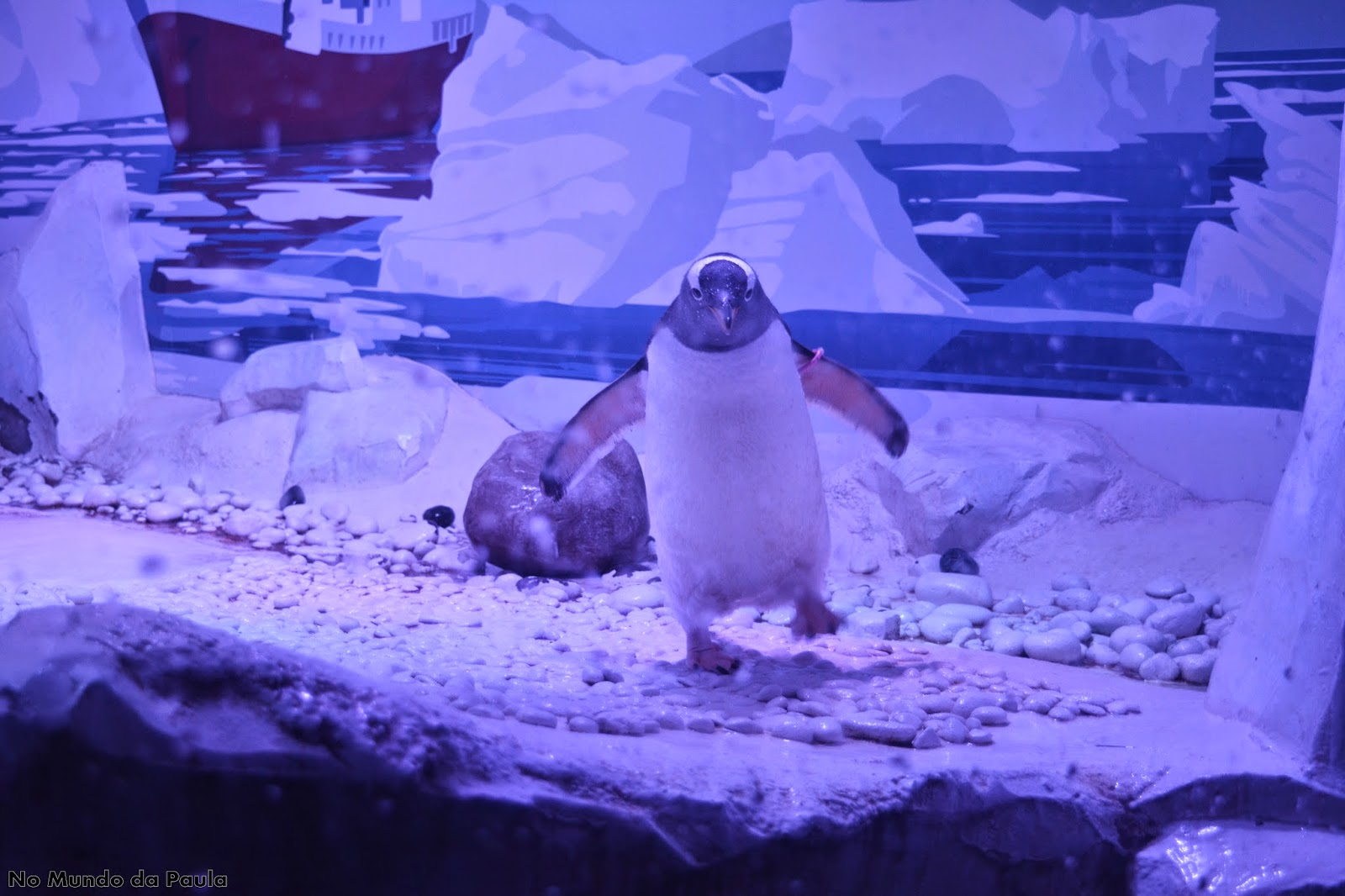Sea Life Aquarium em Londres.
