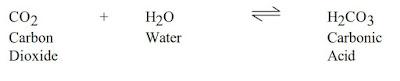 co2 drilling mud fluid contamination treatment