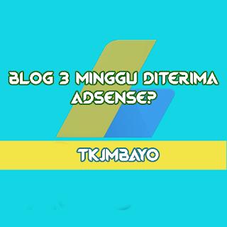 Blog Umur 3 Minggu Diterima Adsense?