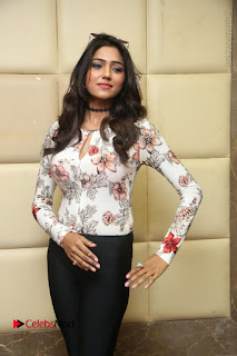 Telugu Actress Model Shalu Chourasiya Stills at Rapture 2017 Grand Logo Launch  0027.JPG