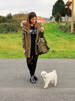 http://ladyburdeos.blogspot.com.es/2016/12/denny-dog.html#more