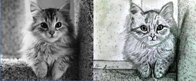 PUZZY CAT
