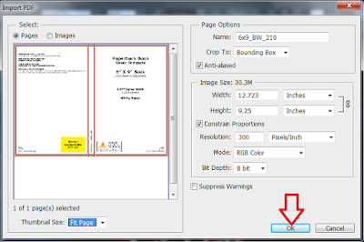 Screenshot: Click ok to import the pdf template