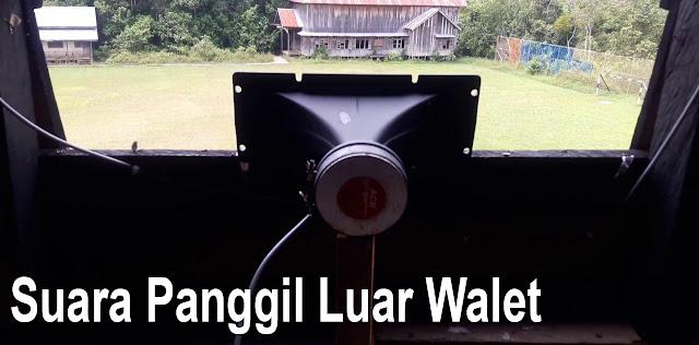 Download Suara Panggil Luar Walet