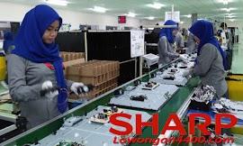 Lowongan Kerja Terbaru PT Sharp Electronics Indonesia