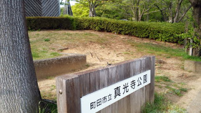 町田市の真光寺公園
