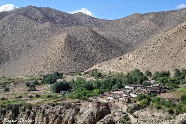 Ghyakar